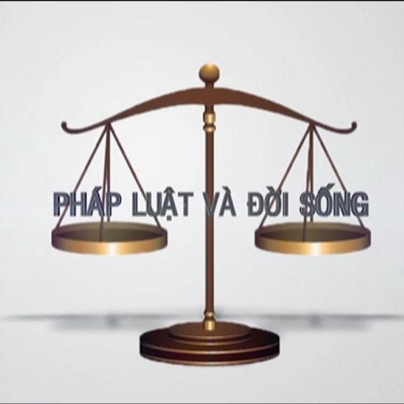 Kiến thức pháp luật được luật sư giỏi vĩnh phúc nắm vững vàng